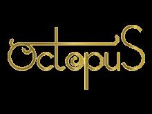 Octopus rabatkoder